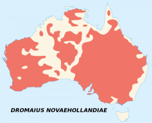 A map showing the natural range of the emu on the mainland of Australia.