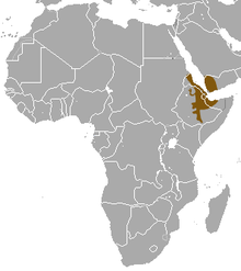 A map of Africa and the Middle East showing the distribution of the hamadryas baboon.