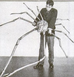 A man holding a large Japanese spider crab.