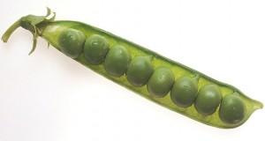 Peas in a pod.