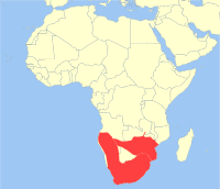 A map of Africa showing the distribution of the chacma baboon.