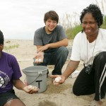 A conservation group collecting sea turtles eggs for relocation.
