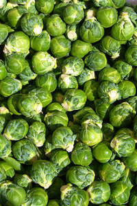 A large group of Brussels sprouts.
