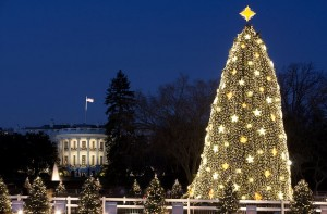 The White House Christmas Tree