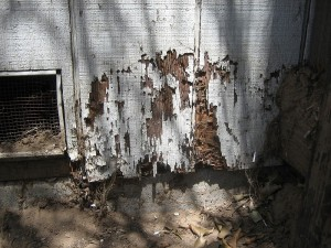 termite damage to the outside of a house.